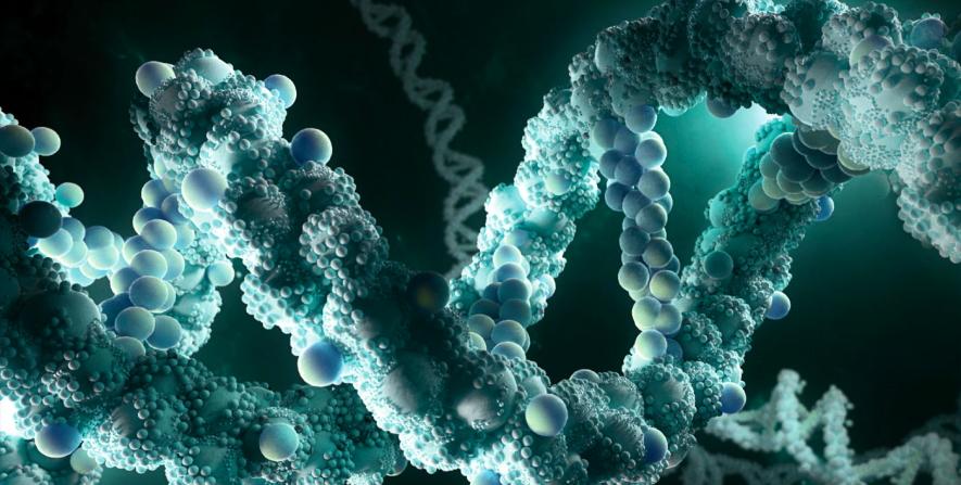 understanding the basics of biology